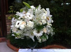 Dia das flores