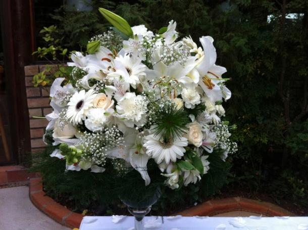 casamento Lotus