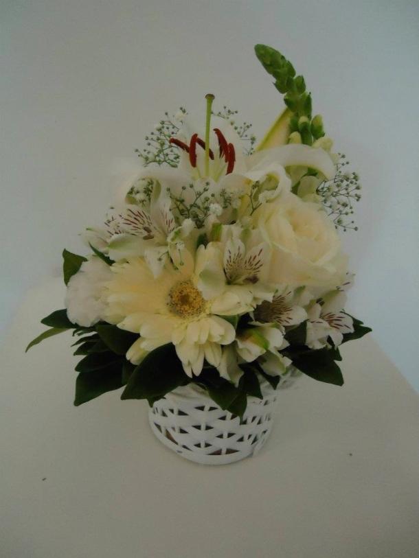 flores lotus2